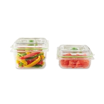 Fresh container 2-pack, FFC0015